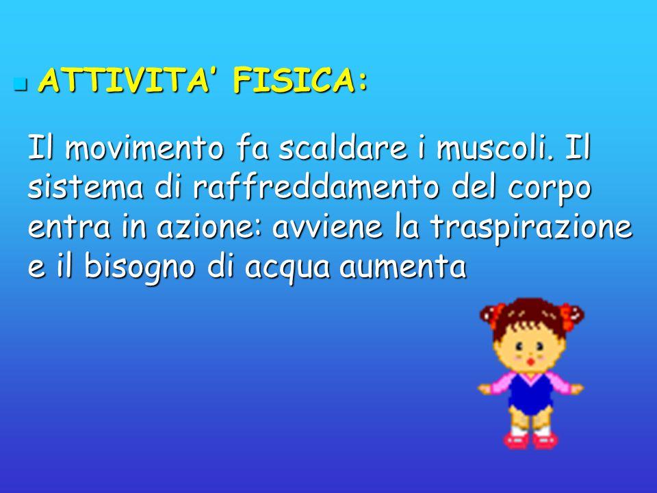 ATTIVITA' FISICA: ATTIVITA' FISICA: Il movimento fa scaldare i muscoli. Il sistema di raffreddamento del corpo entra in azione: avviene la traspirazio