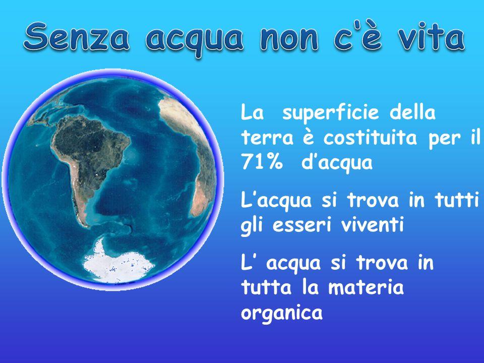 La superficie della terra è costituita per il 71% d'acqua L'acqua si trova in tutti gli esseri viventi L' acqua si trova in tutta la materia organica
