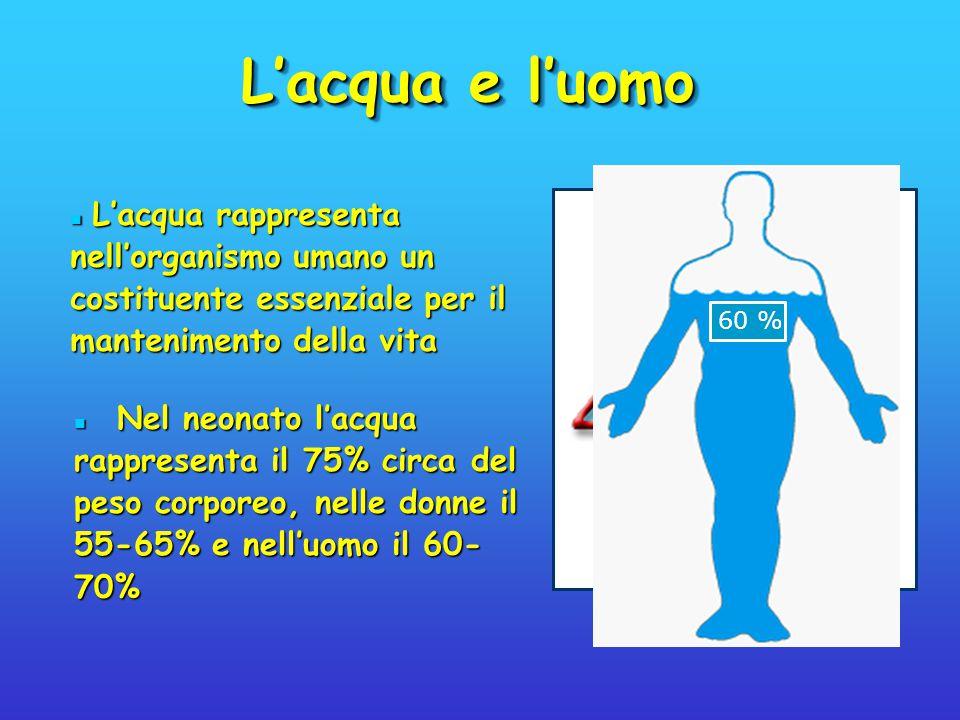 L'acqua e l'uomo Nel neonato l'acqua rappresenta il 75% circa del peso corporeo, nelle donne il 55-65% e nell'uomo il 60- 70% Nel neonato l'acqua rapp