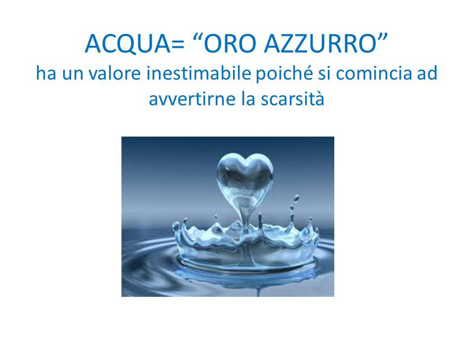 """ACQUA= """"ORO AZZURRO"""" ha un valore inestimabile poiché si comincia ad avvertirne la scarsità"""