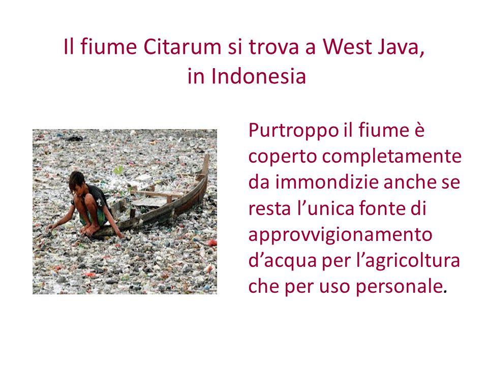 Il fiume Citarum si trova a West Java, in Indonesia Purtroppo il fiume è coperto completamente da immondizie anche se resta l'unica fonte di approvvigionamento d'acqua per l'agricoltura che per uso personale.