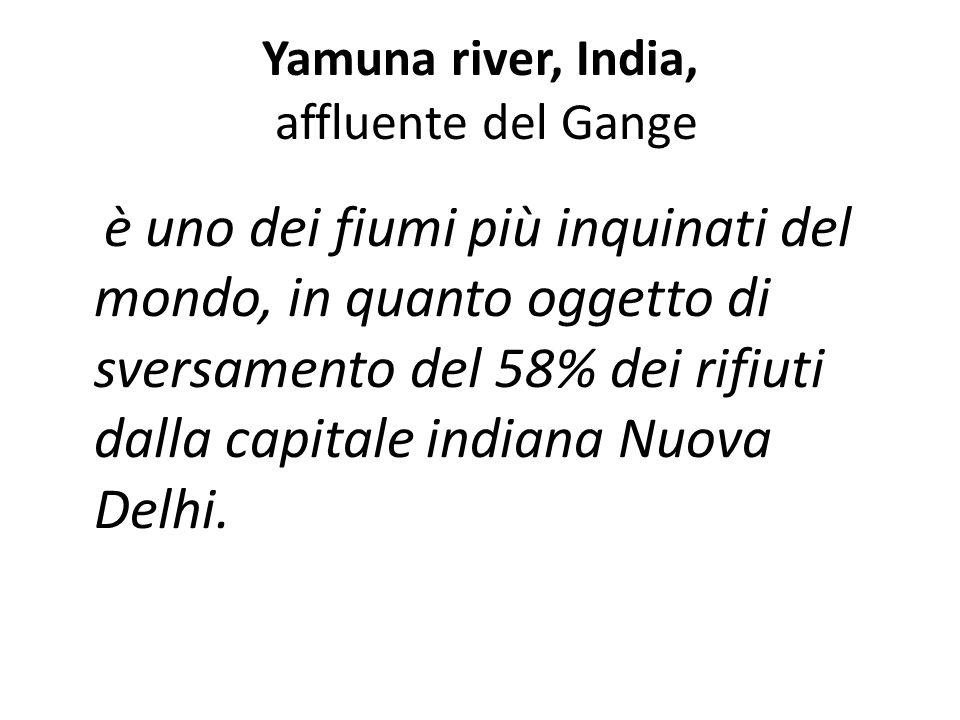 Yamuna river, India, affluente del Gange è uno dei fiumi più inquinati del mondo, in quanto oggetto di sversamento del 58% dei rifiuti dalla capitale