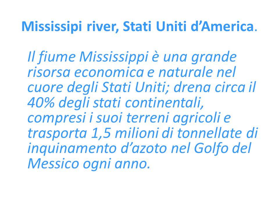 Mississipi river, Stati Uniti d'America. Il fiume Mississippi è una grande risorsa economica e naturale nel cuore degli Stati Uniti; drena circa il 40