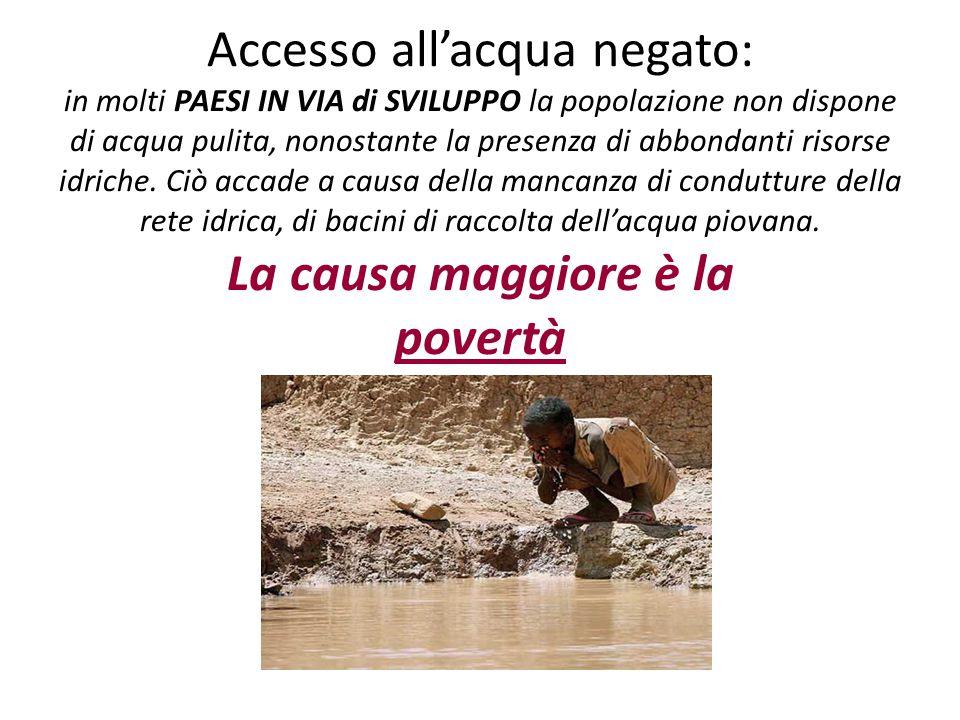 Accesso all'acqua negato: in molti PAESI IN VIA di SVILUPPO la popolazione non dispone di acqua pulita, nonostante la presenza di abbondanti risorse idriche.