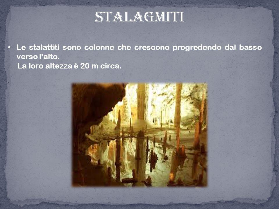 stalagmiti Le stalattiti sono colonne che crescono progredendo dal basso verso l'alto. La loro altezza è 20 m circa.