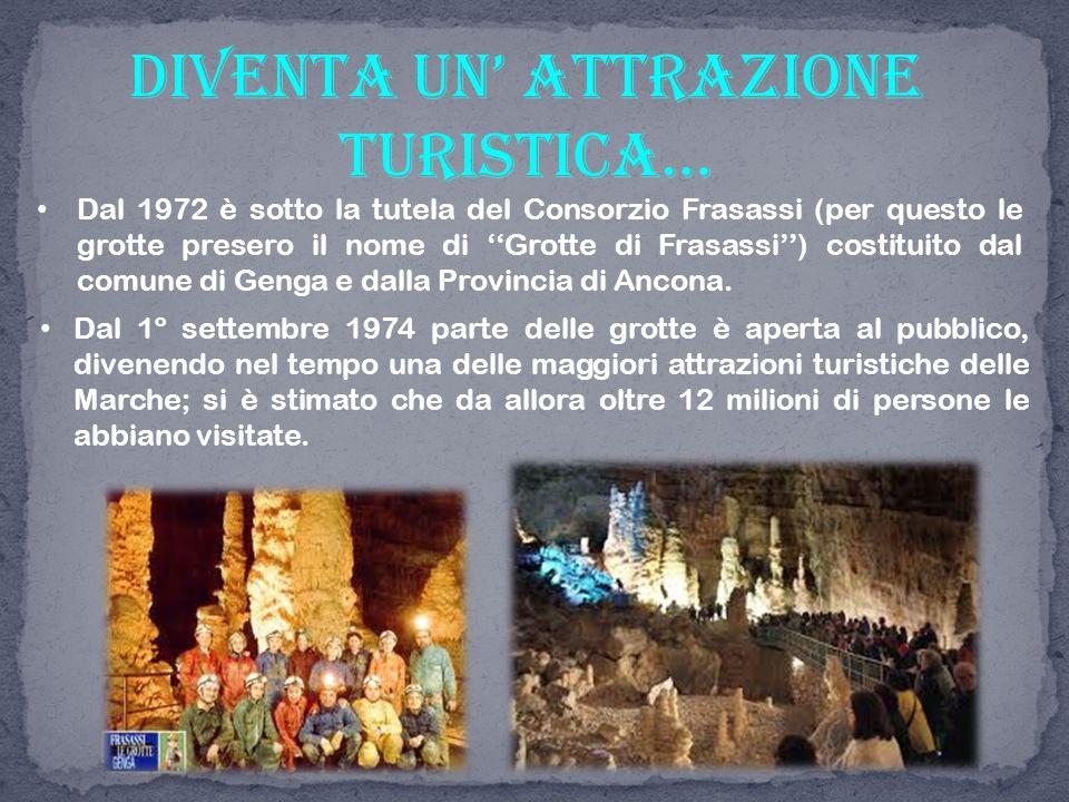 Dal 1972 è sotto la tutela del Consorzio Frasassi (per questo le grotte presero il nome di ''Grotte di Frasassi'') costituito dal comune di Genga e da