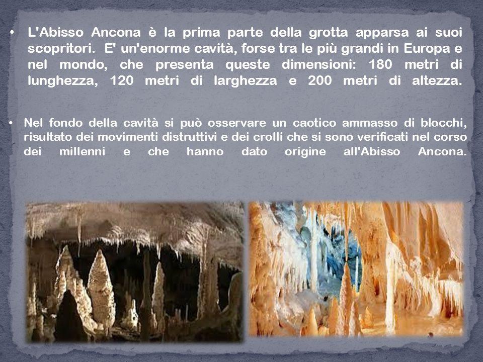 L'Abisso Ancona è la prima parte della grotta apparsa ai suoi scopritori. E' un'enorme cavità, forse tra le più grandi in Europa e nel mondo, che pres