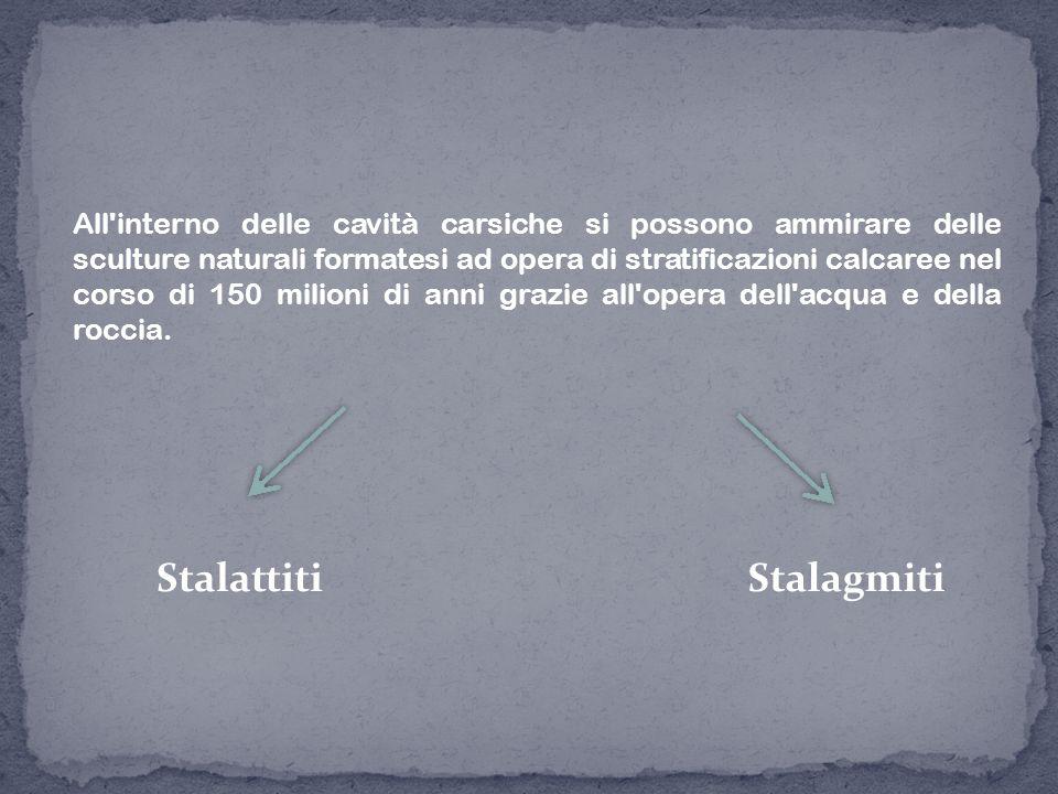 StalattitiStalagmiti All'interno delle cavità carsiche si possono ammirare delle sculture naturali formatesi ad opera di stratificazioni calcaree nel