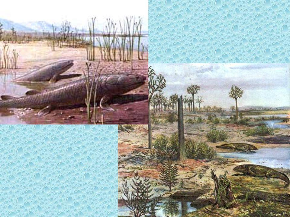 Art. 7 Le risorse idriche devono essere accuratamente inventariate.