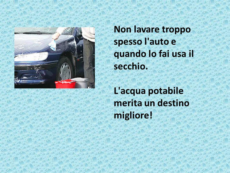 Non lavare troppo spesso l'auto e quando lo fai usa il secchio. L'acqua potabile merita un destino migliore!
