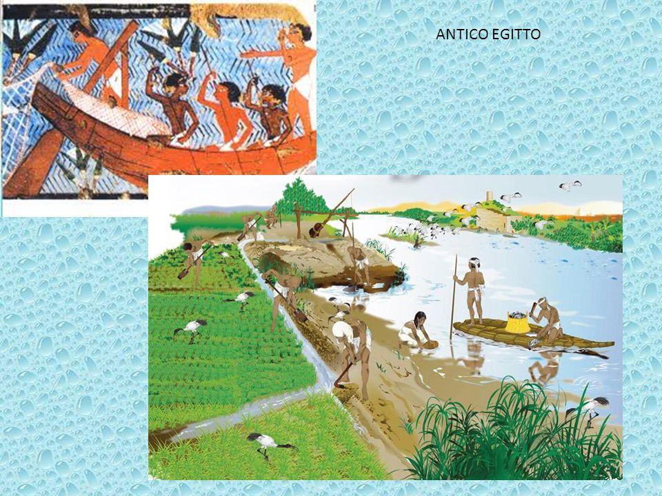 Art.10 L acqua è un patrimonio comune il cui valore deve essere riconosciuto da tutti.