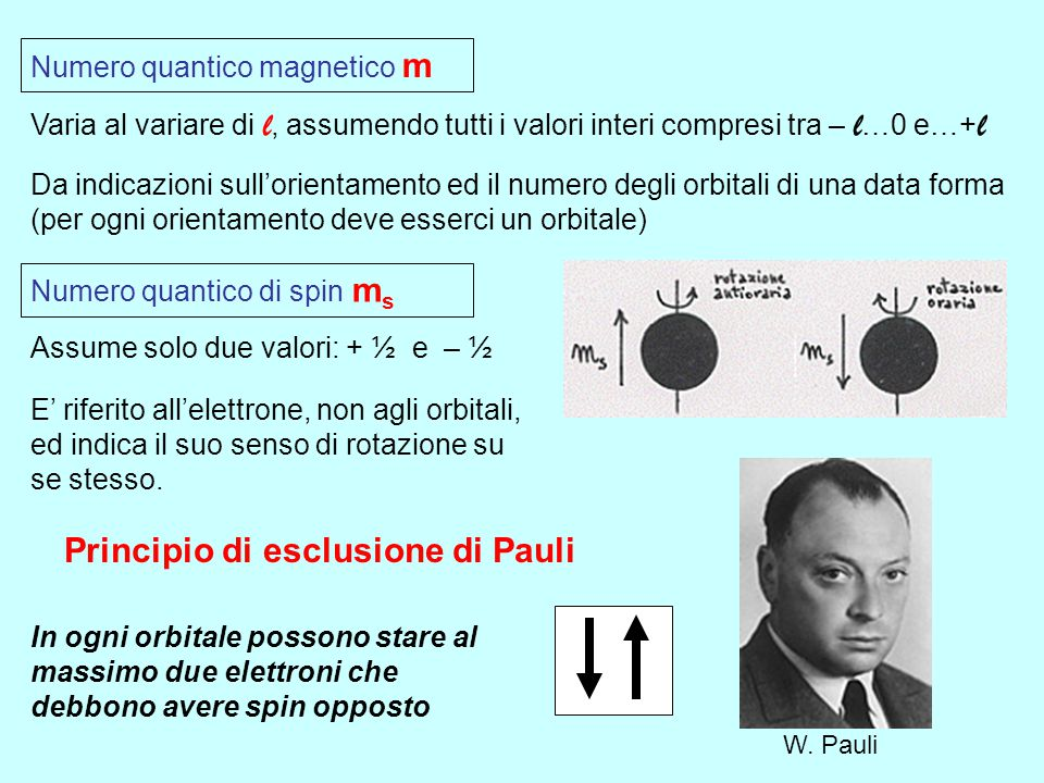 Numero quantico secondario l Varia al variare di n, assumendo tutti i valori interi compresi tra 0 e n -1 Da indicazioni sulla forma degli orbitali l