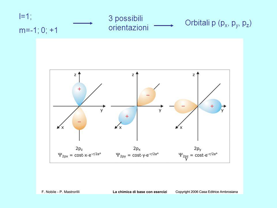 4° livello energetico n = 4 n = 4 l = 0 m = 0 Un orbitale sferico l = 1 m = 0 Tre orbitali a farfalla m = 1 m = -1 4p 6 4S 2 l = 2 m = 0 cinque orbita