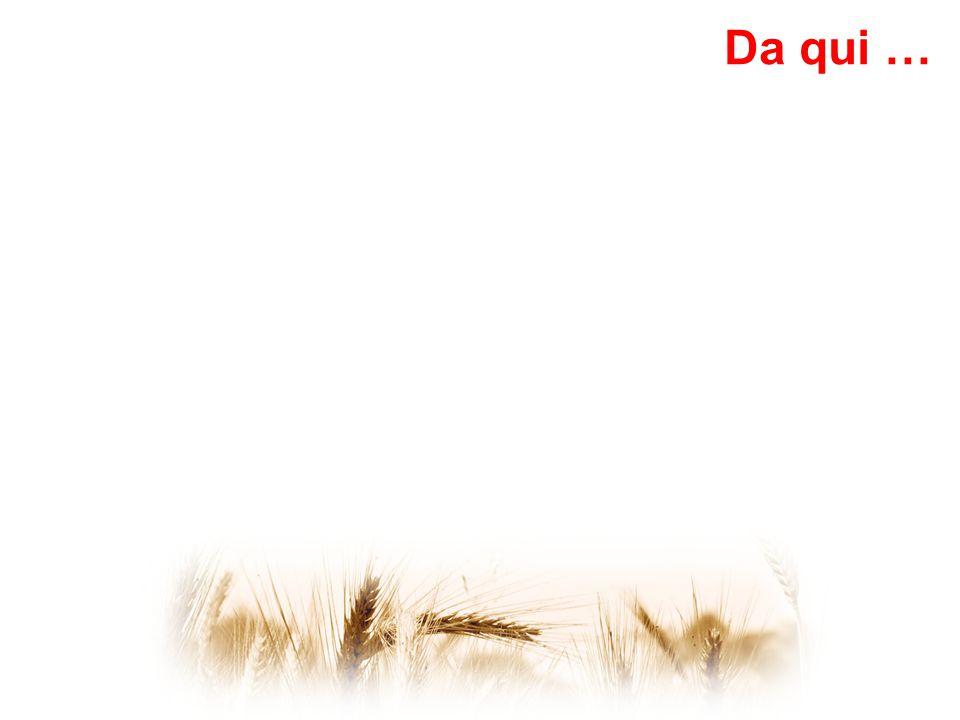 Elezioni amministrazione frazionale 6 maggio 2012 (percorso condiviso con amministrazione comunale, associazione Paîs di San Marc, coordinamento regionale) Il comitato è l'ente di diritto pubblico a cui viene affidata la gestione amministrativa per conto della comunità e della collettività che rimane la unica proprietaria dei terreni Da qui …