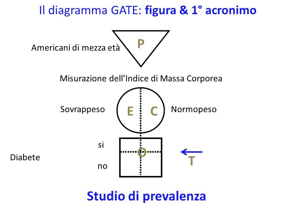 Il diagramma GATE: figura & 1° acronimo Americani di mezza età Misurazione dell'Indice di Massa Corporea Sovrappeso Diabete si no P T Studio di prevalenza Normopeso E1E1 E2E2 C O Obesi pre