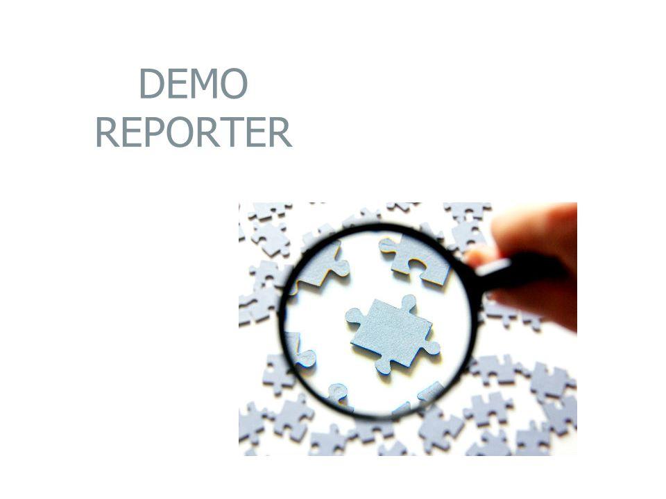 DEMO REPORTER