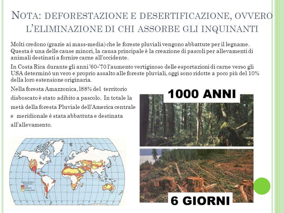 N OTA : DEFORESTAZIONE E DESERTIFICAZIONE, OVVERO L ' ELIMINAZIONE DI CHI ASSORBE GLI INQUINANTI Molti credono (grazie ai mass-media) che le foreste p