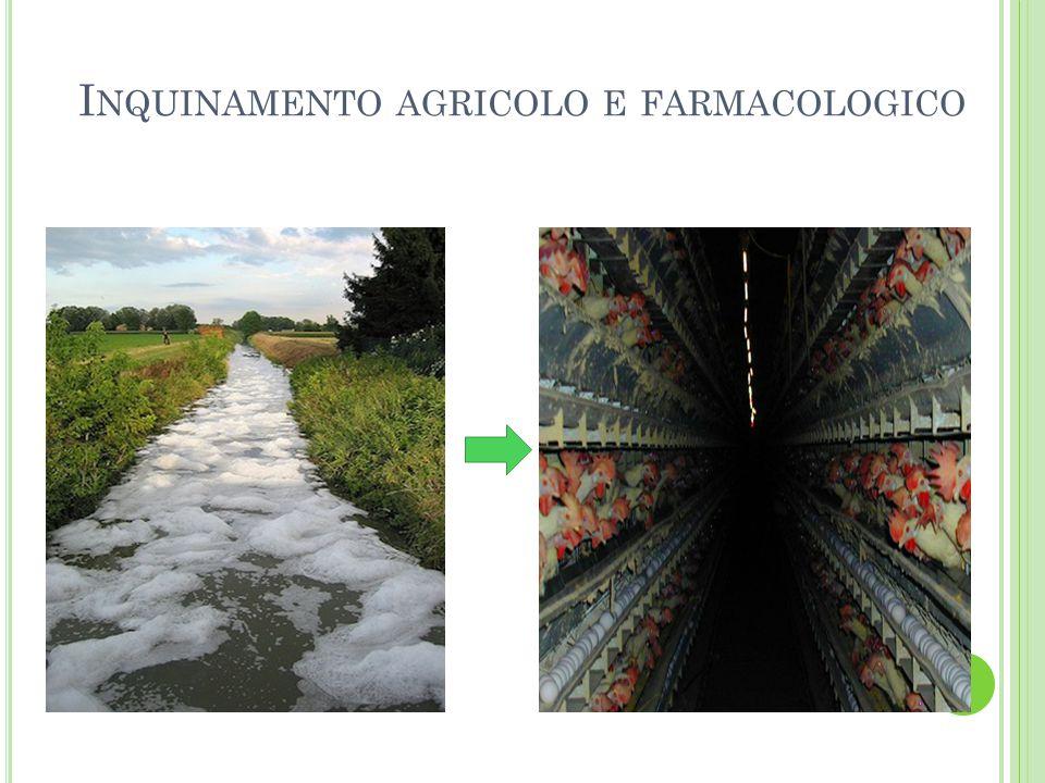 I NQUINAMENTO AGRICOLO E FARMACOLOGICO