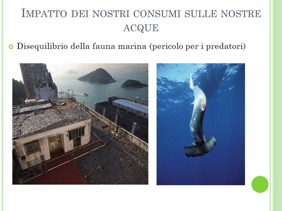 I MPATTO DEI NOSTRI CONSUMI SULLE NOSTRE ACQUE Disequilibrio della fauna marina (pericolo per i predatori)