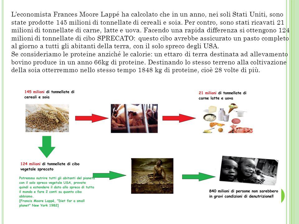 L'economista Frances Moore Lappé ha calcolato che in un anno, nei soli Stati Uniti, sono state prodotte 145 milioni di tonnellate di cereali e soia. P