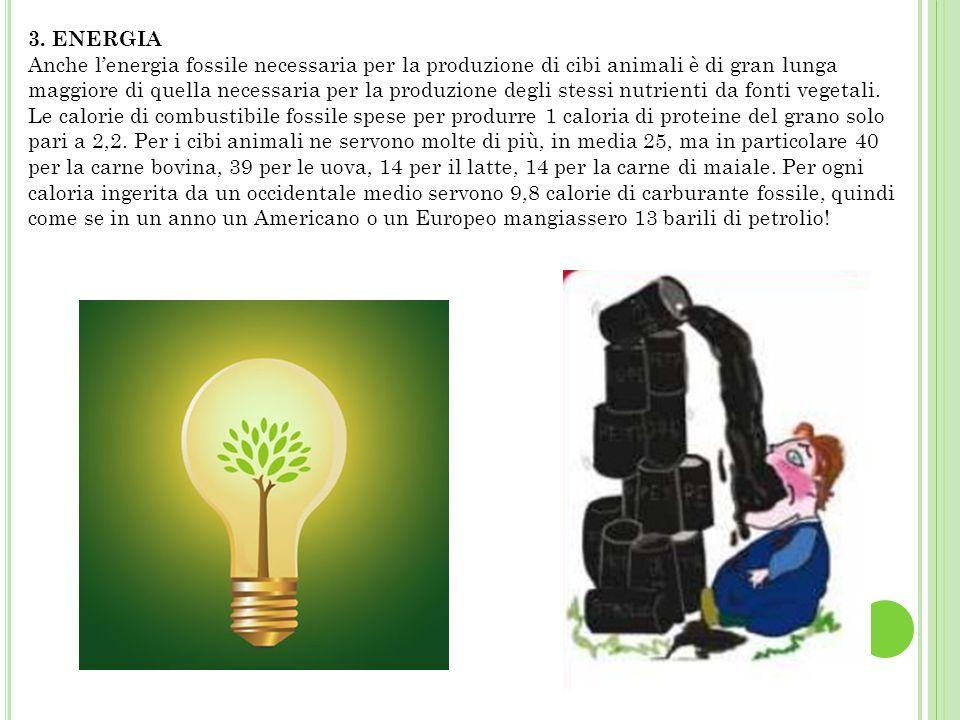 3. ENERGIA Anche l'energia fossile necessaria per la produzione di cibi animali è di gran lunga maggiore di quella necessaria per la produzione degli