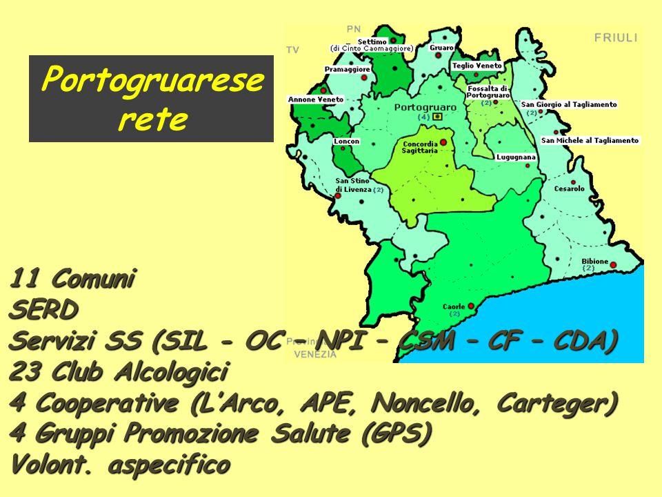 11 Comuni SERD Servizi SS (SIL - OC – NPI – CSM – CF – CDA) 23 Club Alcologici 4 Cooperative (L'Arco, APE, Noncello, Carteger) 4 Gruppi Promozione Sal