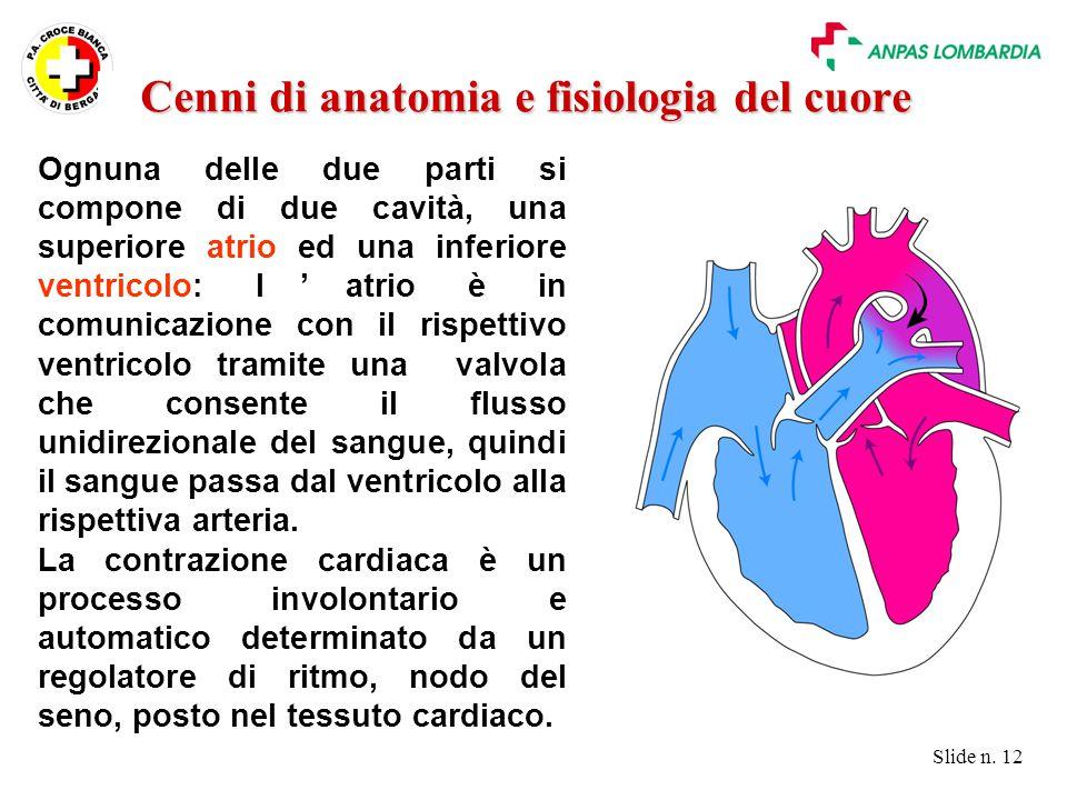 Slide n. 12 Ognuna delle due parti si compone di due cavità, una superiore atrio ed una inferiore ventricolo: l'atrio è in comunicazione con il rispet