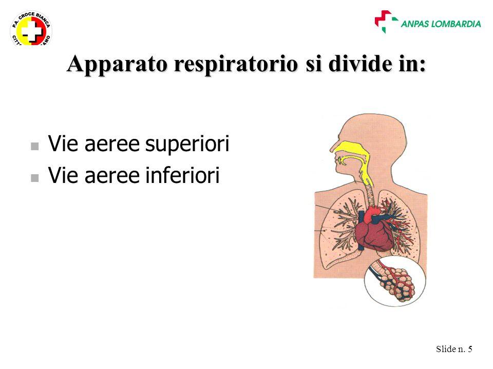 Slide n. 5 Vie aeree superiori Vie aeree inferiori Apparato respiratorio si divide in:
