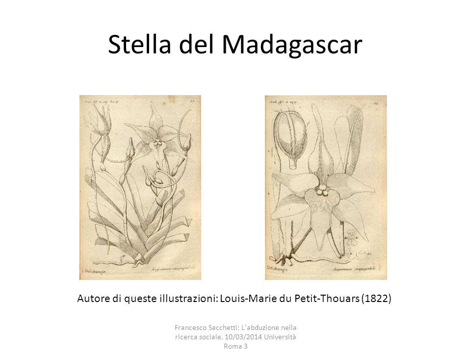Stella del Madagascar Autore di queste illustrazioni: Louis-Marie du Petit-Thouars (1822) Francesco Sacchetti: L'abduzione nella ricerca sociale. 10/0