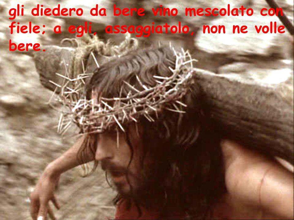 gli diedero da bere vino mescolato con fiele; a egli, assaggiatolo, non ne volle bere.