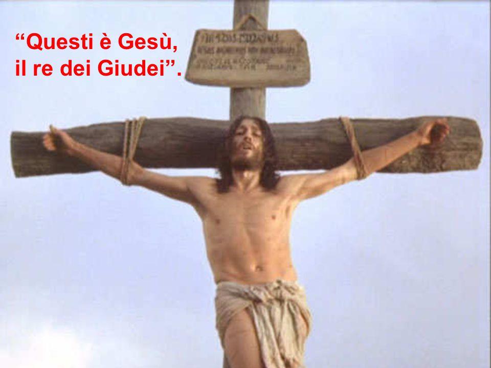 """Al di sopra del suo capo, posero la motivazione scritta della sua condanna: """"Questi è Gesù, il re dei Giudei"""". """"Questi è Gesù, il re dei Giudei""""."""