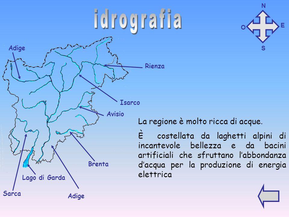Il Trentino Alto Adige confina con: EST: Veneto NORD: Austria OVEST: Lombardia SUD: Lombardia e Veneto Austria Lombardia Veneto N O S E Clicca sul pul
