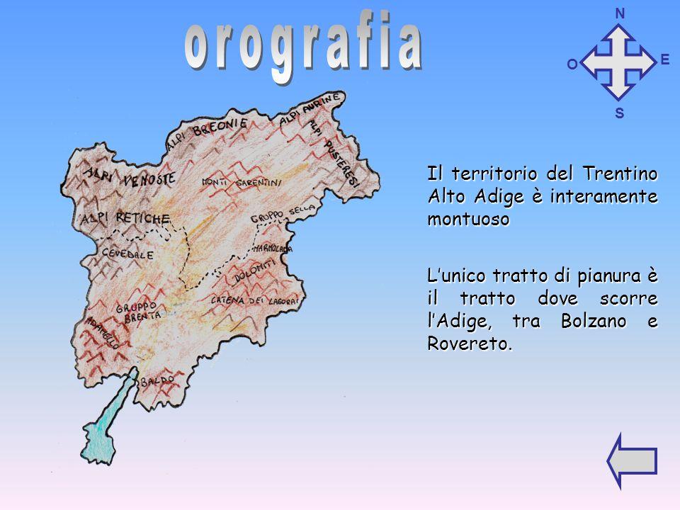 Il territorio del Trentino Alto Adige è interamente montuoso L'unico tratto di pianura è il tratto dove scorre l'Adige, tra Bolzano e Rovereto.