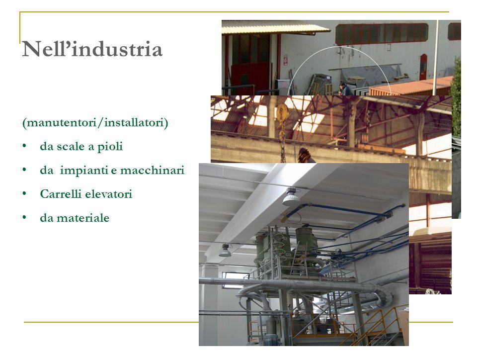 Nell'industria (manutentori/installatori) da scale a pioli da impianti e macchinari Carrelli elevatori da materiale