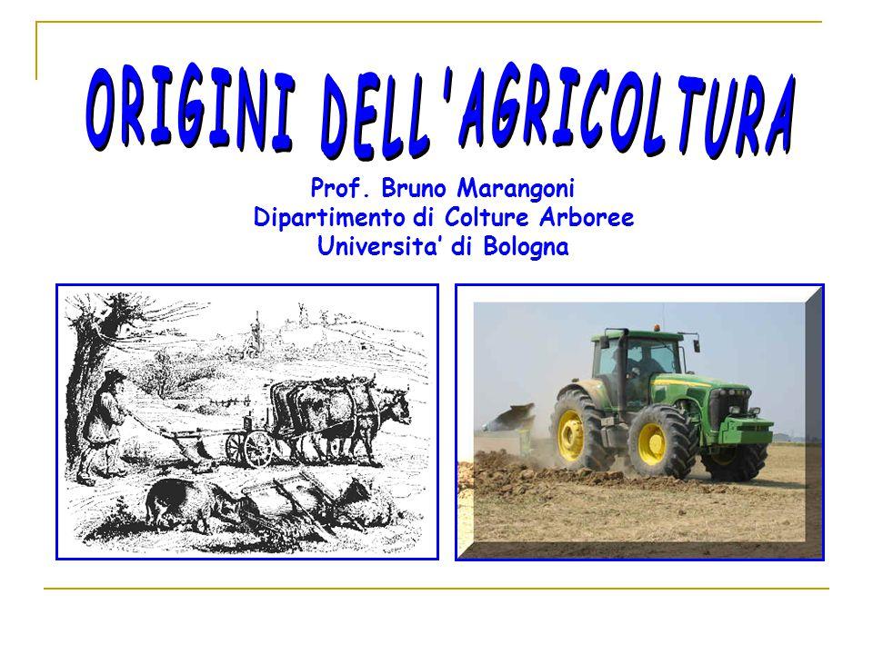 Prof. Bruno Marangoni Dipartimento di Colture Arboree Universita' di Bologna