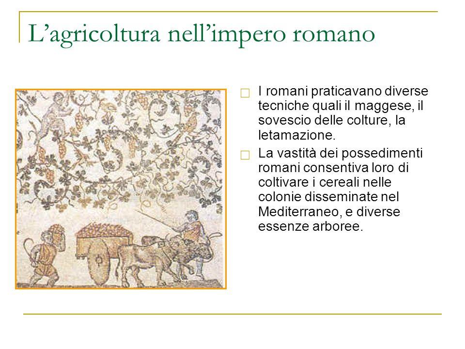L'agricoltura nell'impero romano  I romani praticavano diverse tecniche quali il maggese, il sovescio delle colture, la letamazione.  La vastità dei