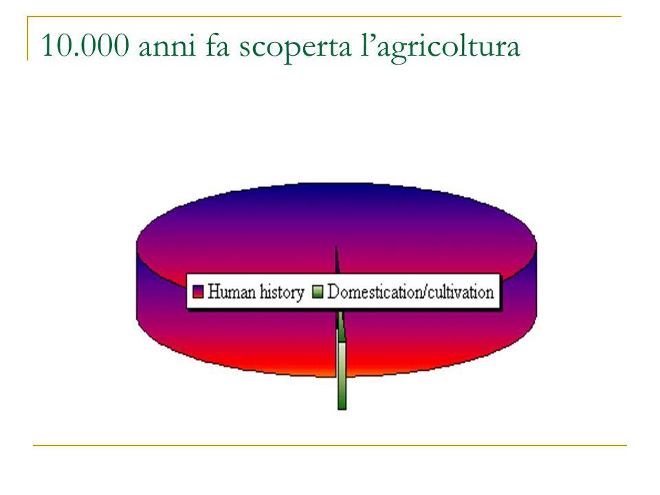 10.000 anni fa scoperta l'agricoltura