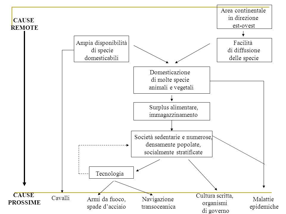 Area continentale in direzione est-ovest Facilità di diffusione delle specie Ampia disponibilità di specie domesticabili Domesticazione di molte speci