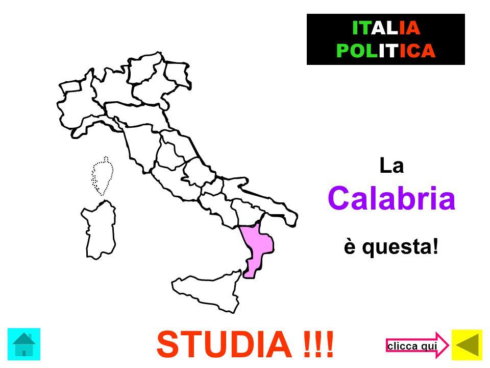 Le Marche HAI SBAGLIATO! ITALIA POLITICA sono queste! clicca qui