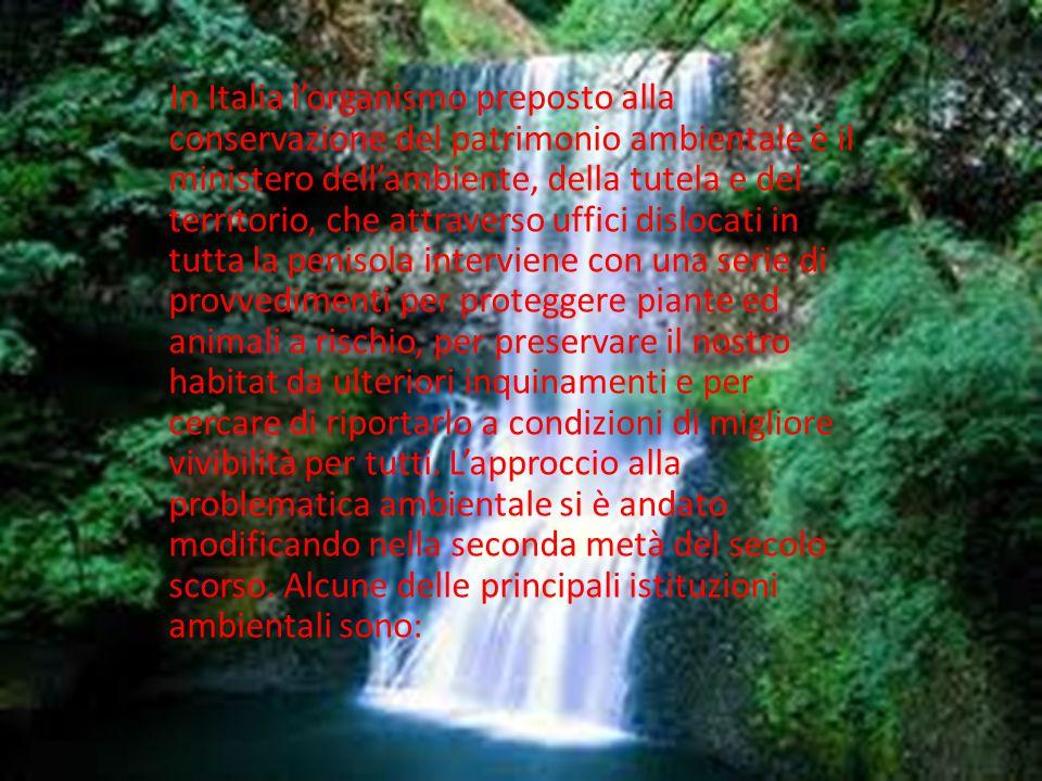 In Italia l'organismo preposto alla conservazione del patrimonio ambientale è il ministero dell'ambiente, della tutela e del territorio, che attravers