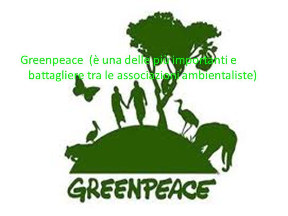 Greenpeace (è una delle più importanti e battagliere tra le associazioni ambientaliste)