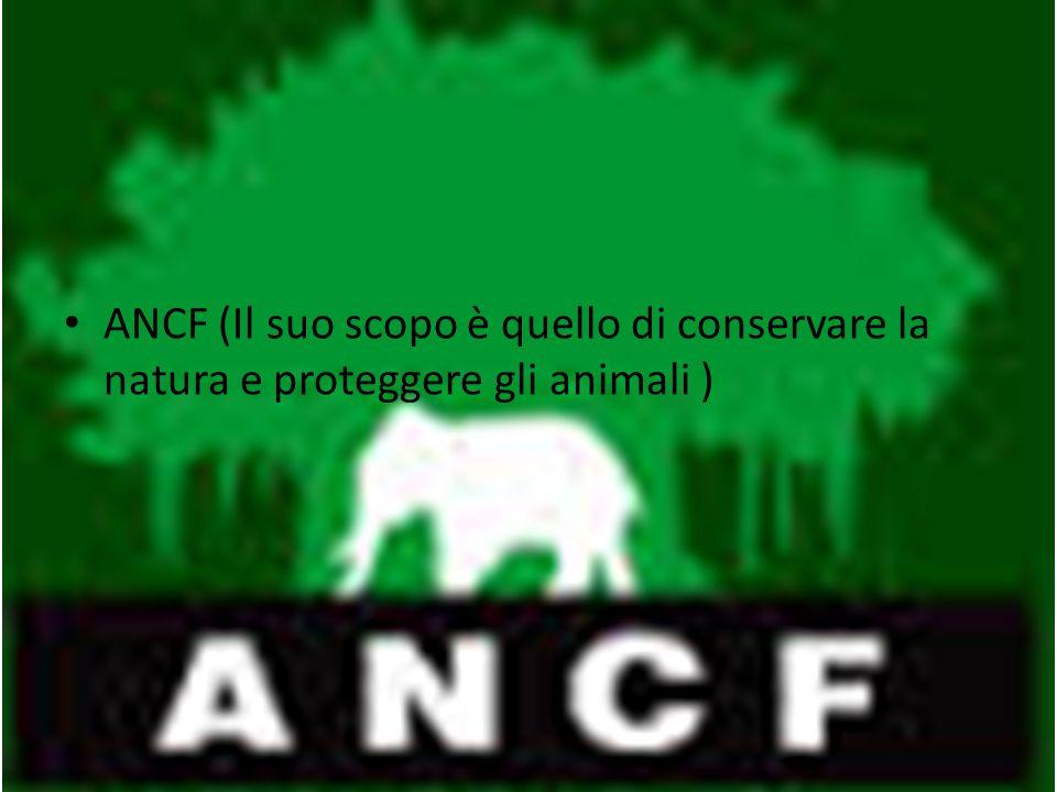 ANCF (Il suo scopo è quello di conservare la natura e proteggere gli animali )