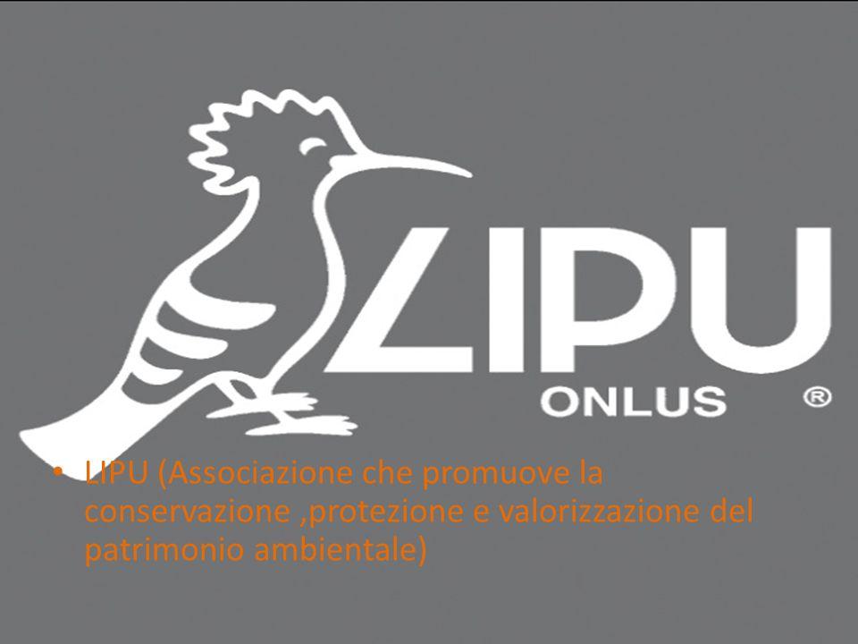 LIPU (Associazione che promuove la conservazione,protezione e valorizzazione del patrimonio ambientale)