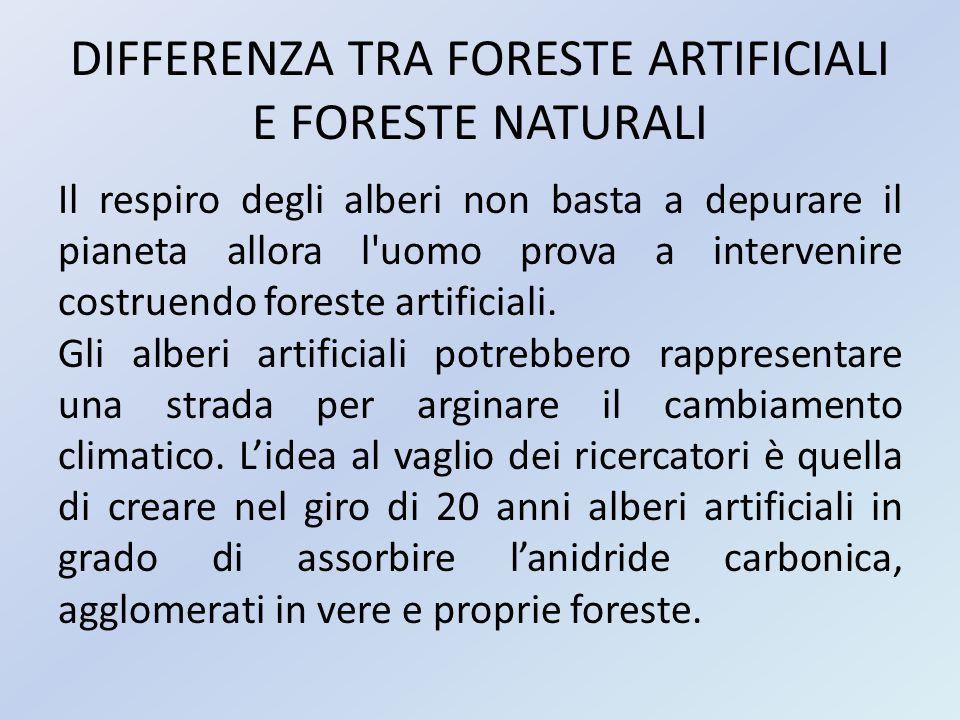 DIFFERENZA TRA FORESTE ARTIFICIALI E FORESTE NATURALI Gli alberi in questione, riuscirebbero ad assorbire percentuali molto più alte di CO2 rispetto a quelli naturali.