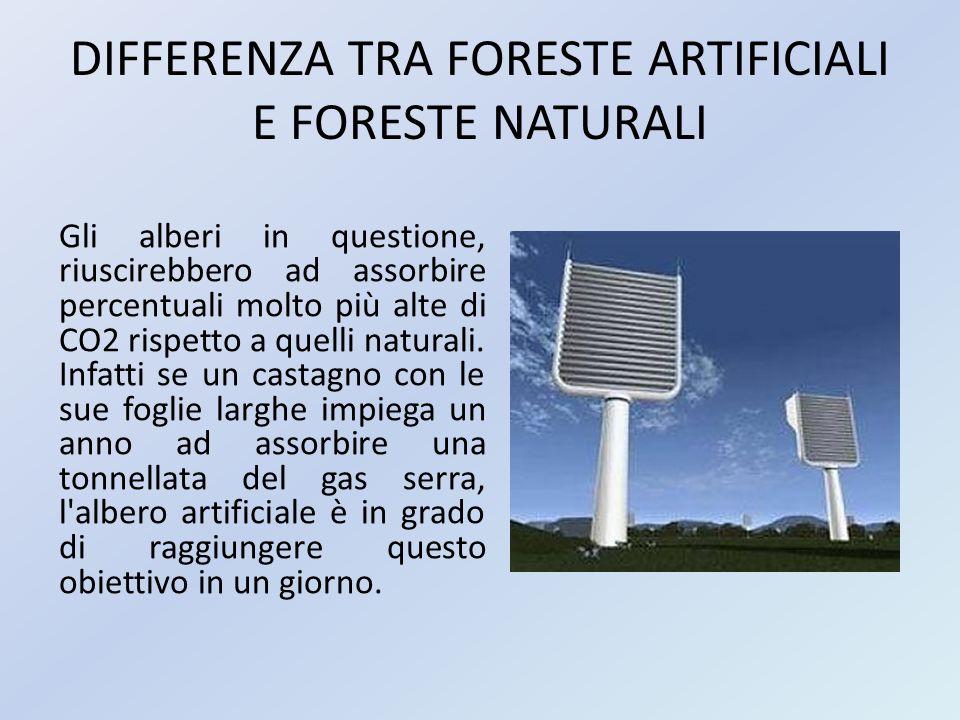 DIFFERENZA TRA FORESTE ARTIFICIALI E FORESTE NATURALI Gli alberi in questione, riuscirebbero ad assorbire percentuali molto più alte di CO2 rispetto a