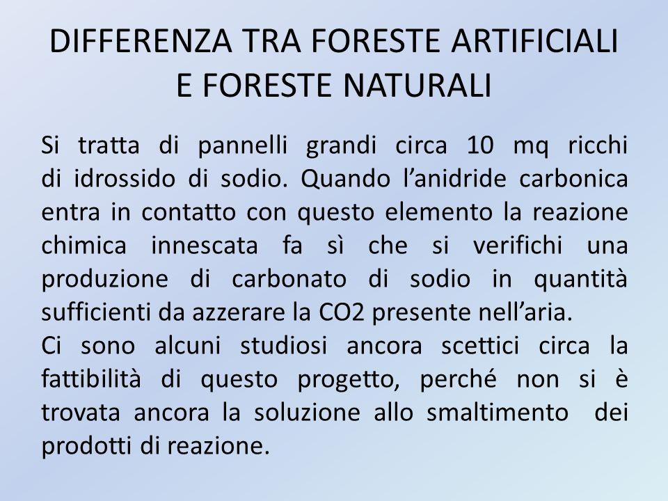 DIFFERENZA TRA FORESTE ARTIFICIALI E FORESTE NATURALI Si tratta di pannelli grandi circa 10 mq ricchi di idrossido di sodio. Quando l'anidride carboni