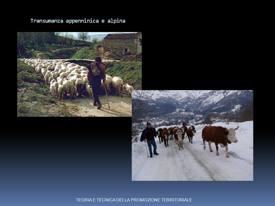 Transumanza appenninica e alpina TEORIA E TECNICA DELLA PROMOZIONE TERRITORIALE
