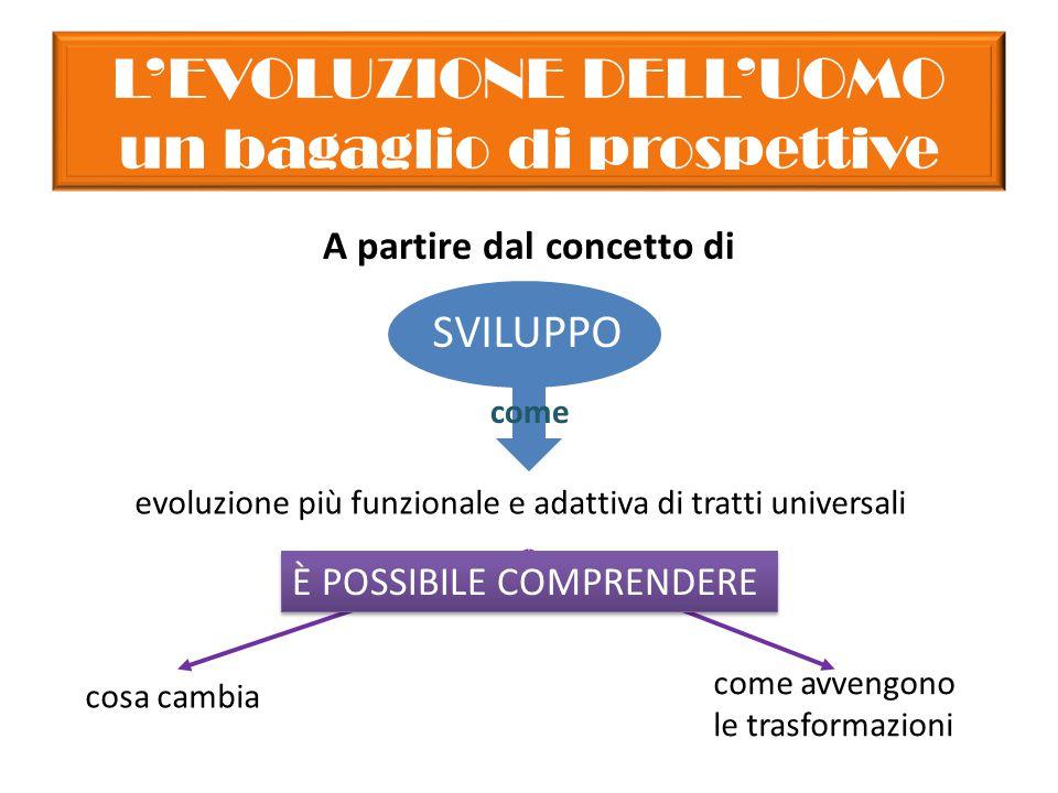 L'EVOLUZIONE DELL'UOMO un bagaglio di prospettive A partire dal concetto di evoluzione più funzionale e adattiva di tratti universali È POSSIBILE COMPRENDERE cosa cambia come avvengono le trasformazioni SVILUPPO come