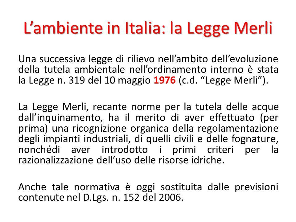L'ambiente in Italia: la Legge Merli Una successiva legge di rilievo nell'ambito dell'evoluzione della tutela ambientale nell'ordinamento interno è st