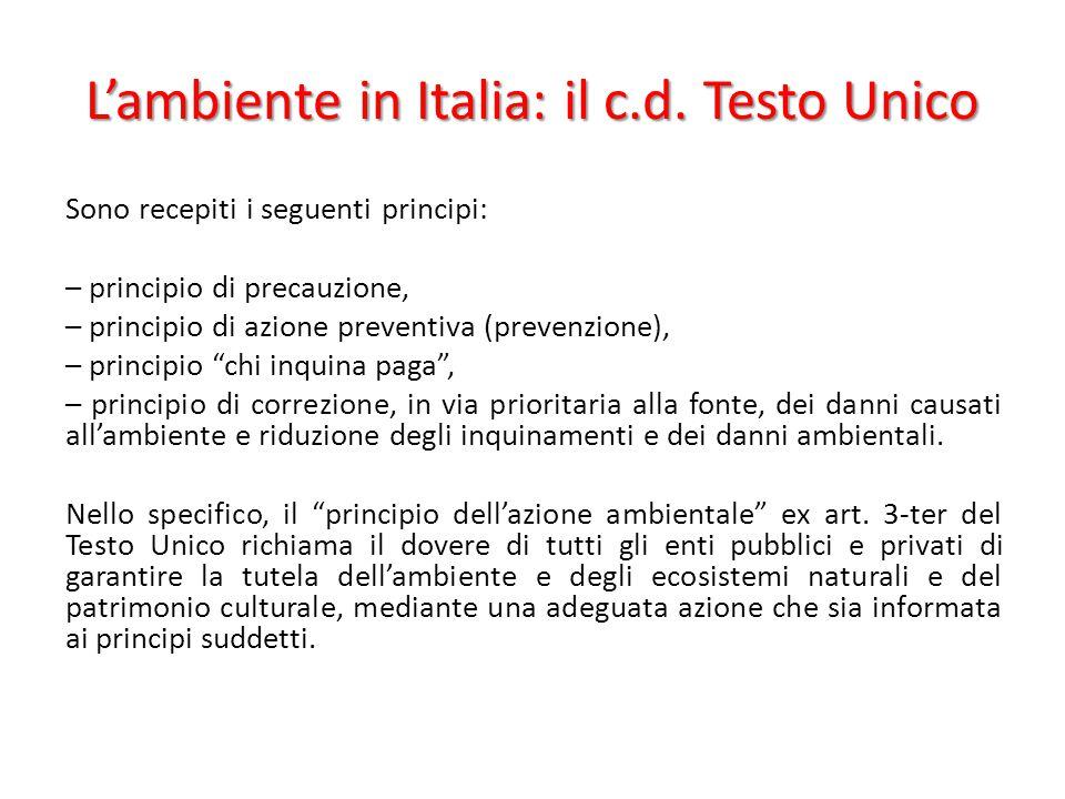 L'ambiente in Italia: il c.d. Testo Unico Sono recepiti i seguenti principi: – principio di precauzione, – principio di azione preventiva (prevenzione